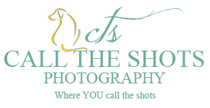 Phoenix Pet Photography