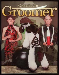 maricopa award winning groomer